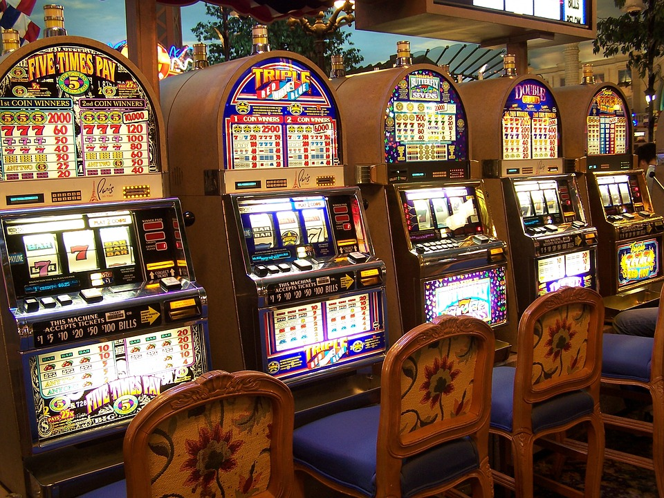 Pet Cats, Pet Dogs Casino